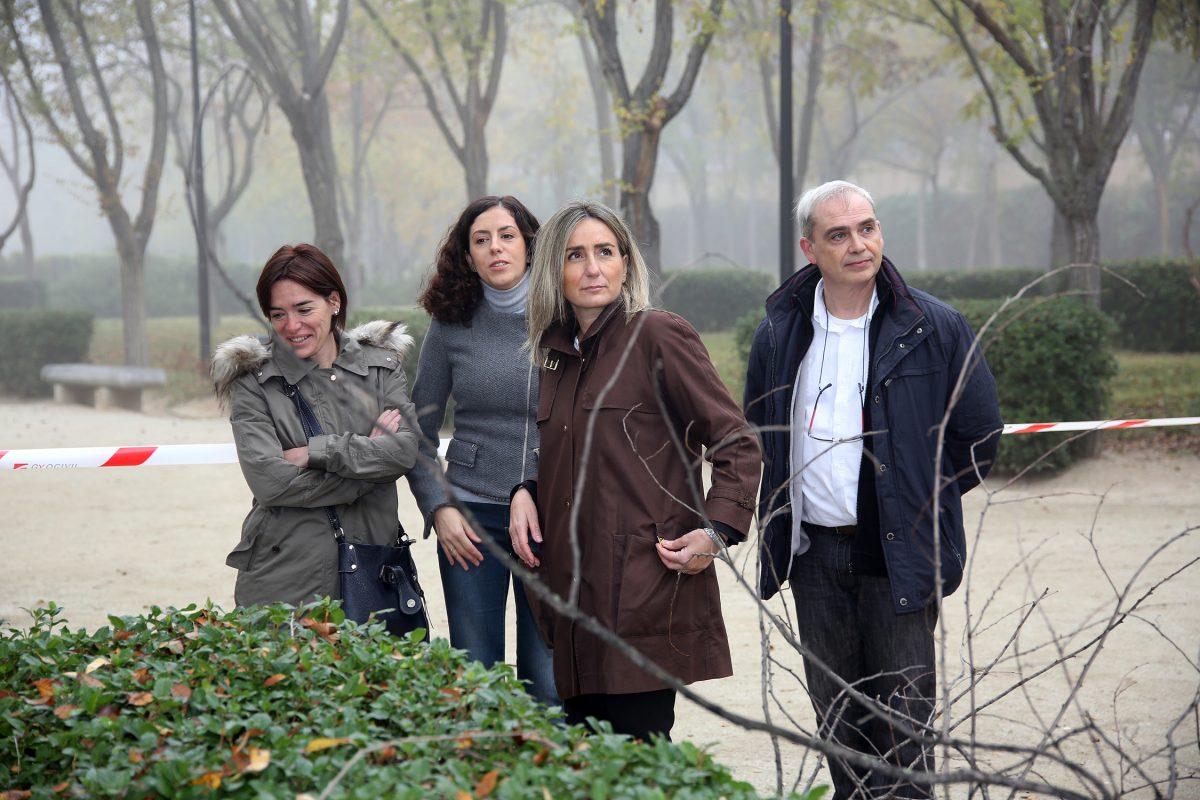 El Ayuntamiento inicia la campaña de poda y anuncia la plantación de 400 árboles en todos los barrios de la ciudad