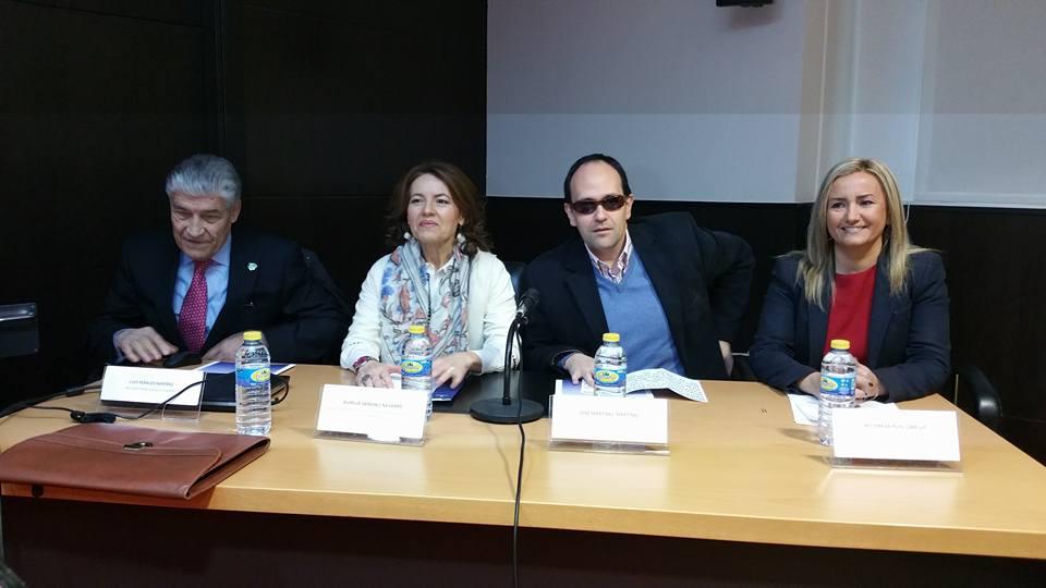 """El equipo de Gobierno destaca el """"sentido transversal"""" de su política en materia de Accesibilidad en Toledo"""