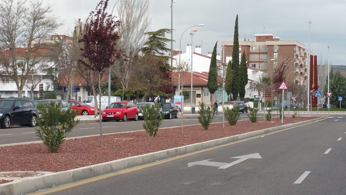 El Ayuntamiento de Toledo acomete una mejora integral en el arbolado del barrio de Santa María de Benquerencia