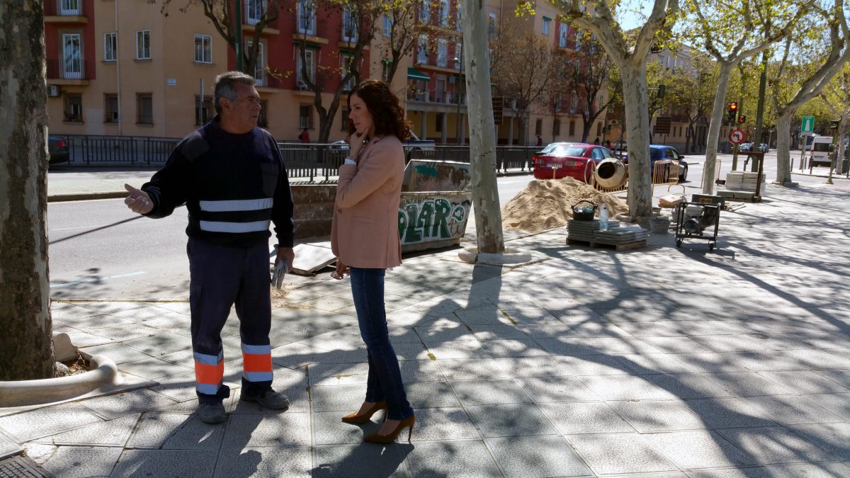 El Ayuntamiento arregla los alcorques de la avenida de la Reconquista deteriorados por el crecimiento de los árboles