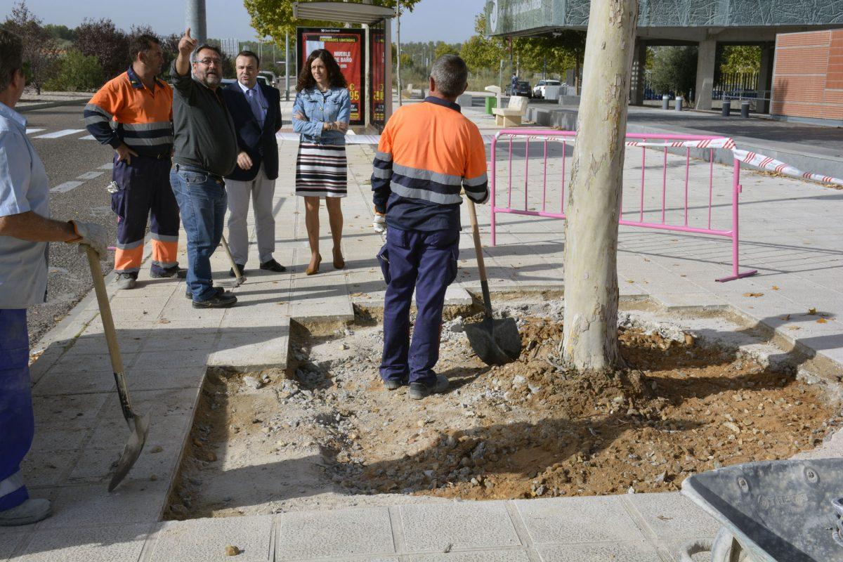 El Consistorio procede al arreglo de los alcorques de las calles de la Fase V de Santa María de Benquerencia