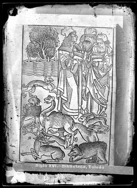 CA-0809-VI_Grabado que ilustra el libro Hortus sanitatis, vel tractatus de herbis et plantis, de animalibus omnibus et de lapidibus , publicado en Maguncia en 1491