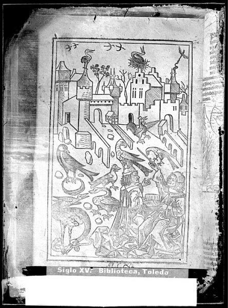 CA-0811-VI_Grabado que ilustra el libro Hortus sanitatis, vel tractatus de herbis et plantis, de animalibus omnibus et de lapidibus , publicado en Maguncia en 1491