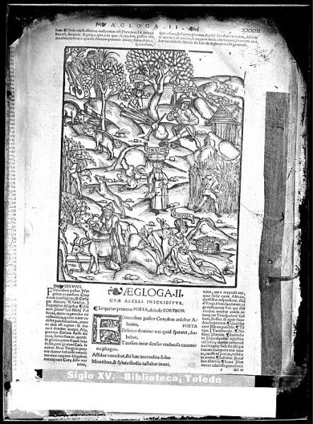 CA-0826-VI_Grabado que ilustra la égloga II de la Opera Virgiliana-cum decem commentis, docte et familiariter exposita de Publio Virgilio Marón, impresa en Lyon en 1529