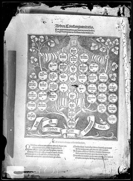 CA-0829-VI_Grabado intitulado Arbor consanguinitatis incluido en un libro no identificado
