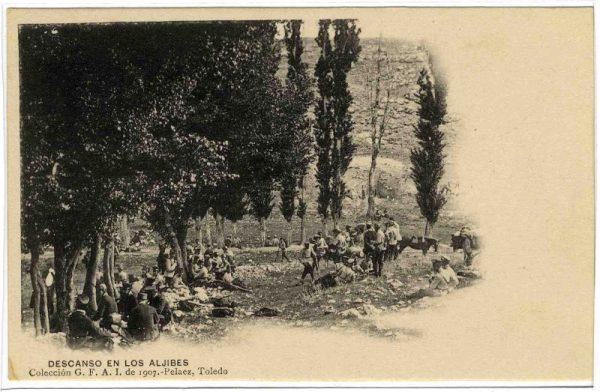 ALBA-POMI-0134