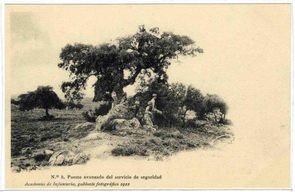 ALBA-POMI-0380