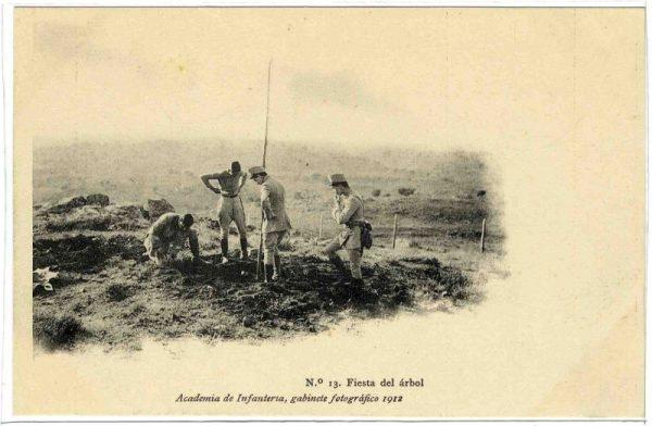 ALBA-POMI-0385