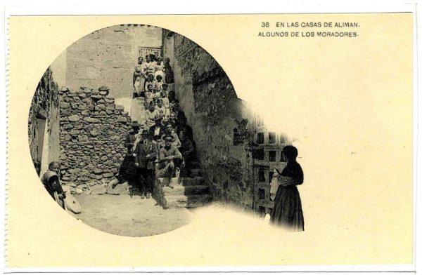 ALBA-POMI-0833