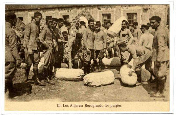 ALBA-POMI-0869
