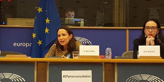 EuroParlamConsultaprevia2