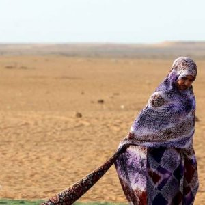 uerza de paz de la ONU en Sáhara Occidental y campamentos de refugiados debe monitorizar derechos humanos