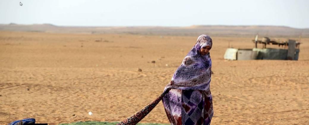Fuerza de paz de la ONU en Sáhara Occidental y campamentos de refugiados debe monitorizar derechos humanos