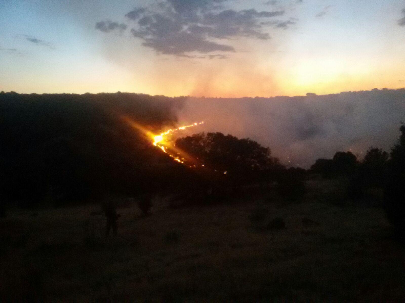 Bomberos de Toledo. Incendio Forestal