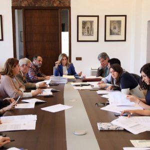 probada la convocatoria para ayudas de Cooperación Internacional y Educación al Desarrollo por 225.000 euros.