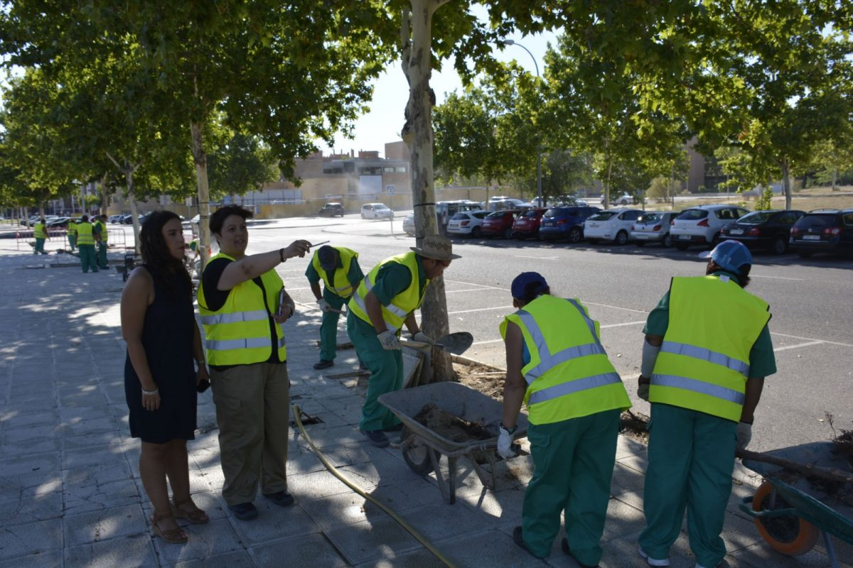 El Gobierno local revisa la recuperación integral de alcorques que se está realizando en la calle Guadalmena del barrio del Polígono