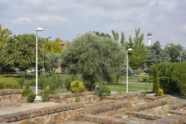 Parque de la Luz 3