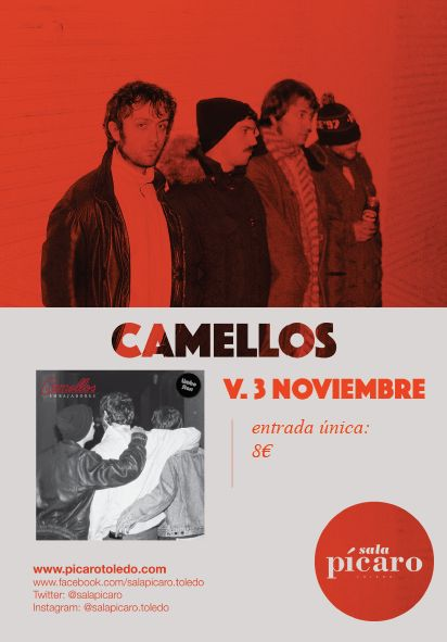 NOCHE JAGER: Camellos