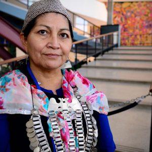 Expertos de la ONU piden a Chile no utilizar la Ley Antiterrorista contra los mapuche