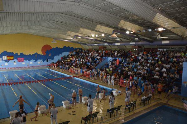 Campeonato natación 02