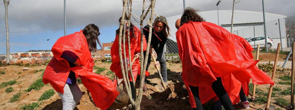 Alumnos del Colegio Valparaíso colaboran en la…