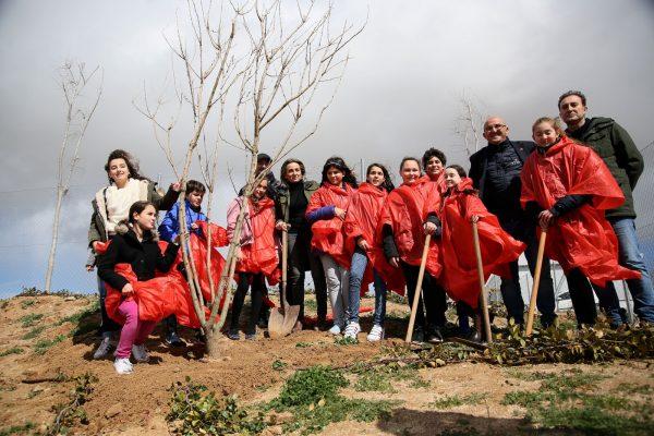 13_plantacion_arboles_valparaiso