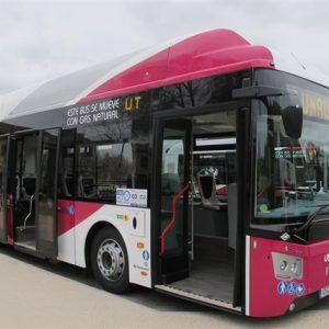 El tráfico a Zocodover quedará abierto esta tarde y los autobuses volverán a su cabecera habitual a partir de mañana