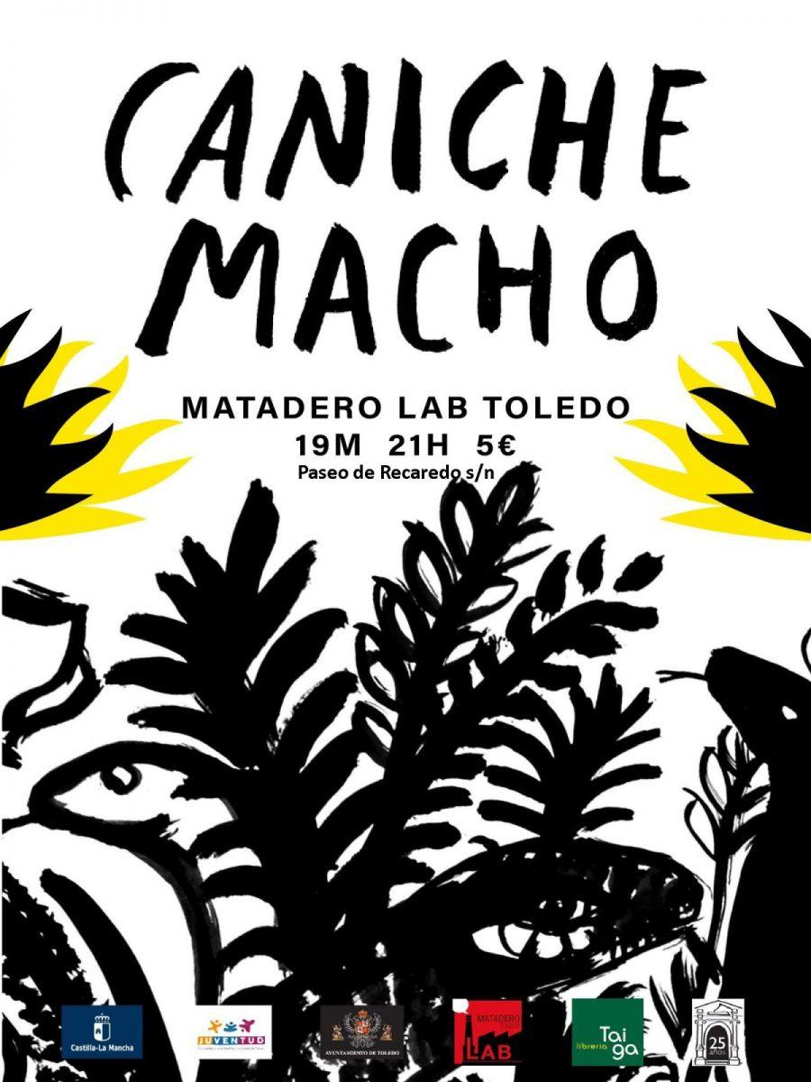 http://www.toledo.es/wp-content/uploads/2018/04/caniche-macho-900x1200.jpg. Concierto CANICHE MACHO