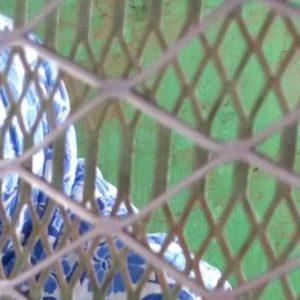 udán: La condena de muerte impuesta a una adolescente violada es una crueldad intolerable
