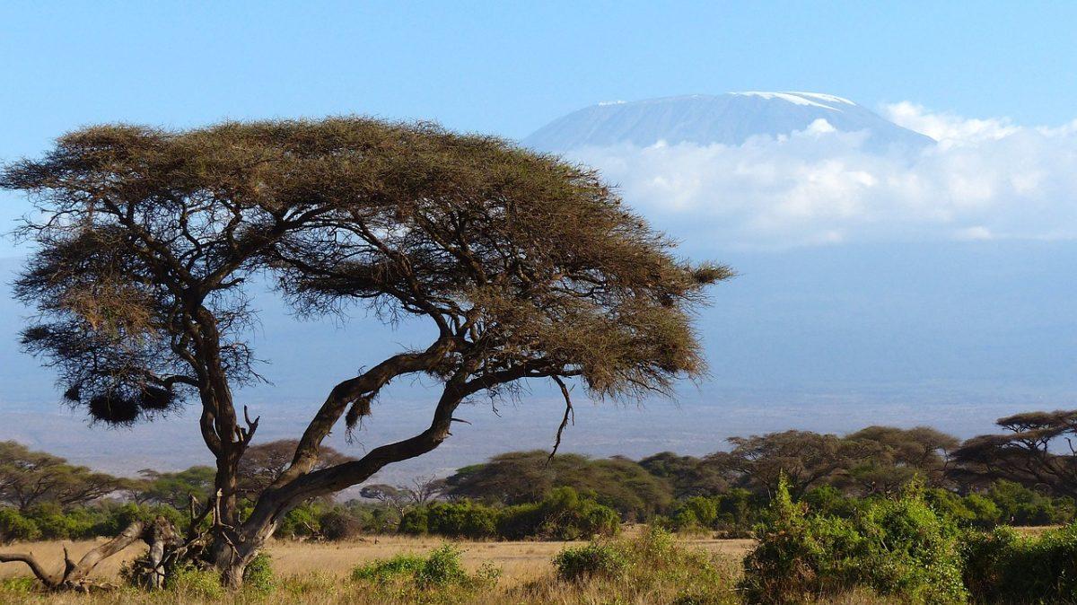 http://www.toledo.es/wp-content/uploads/2018/05/kilimanjaro-africa-720845_1280-1200x674.jpg. Tres desafíos humanitarios para África en 2018