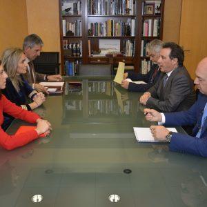 """l Ayuntamiento recibirá el informe de la CHT sobre el proyecto del Recinto Ferial de Safont """"en tres o cuatro semanas"""""""