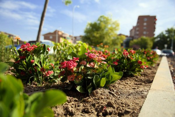 Jardines Río Guadarrama_4