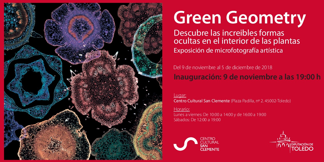 "Exposición de microfotografía artística ""Green Geometry"""