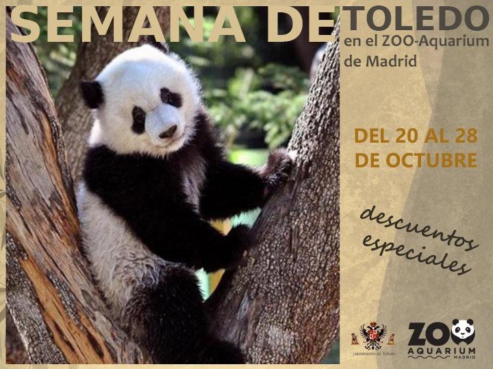 https://www.toledo.es/wp-content/uploads/2018/10/zoo.jpeg. El Zoo de Madrid celebra la Semana de Toledo con descuentos de más del 40 por ciento para los toledanos en la semana del 20 al 28