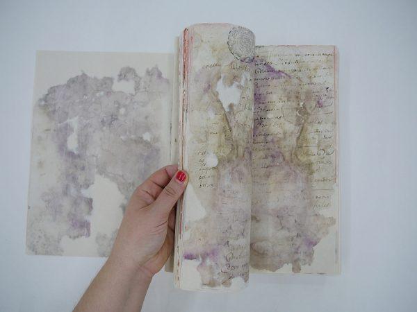 31_Resultado final del cuerpo del libro