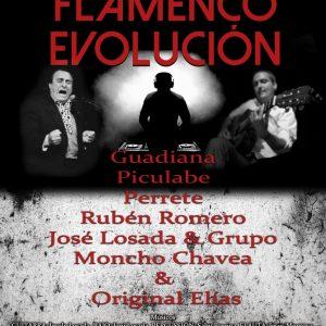 FLAMENCO EN EVOLUCION