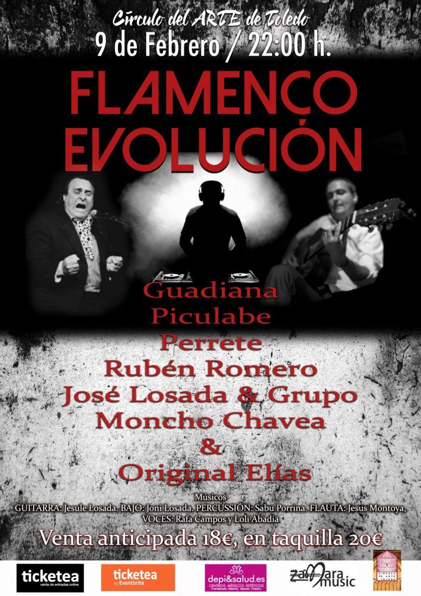 https://www.toledo.es/wp-content/uploads/2019/01/9-de-febreo-2019-ok-848x1200.jpg. FLAMENCO EN EVOLUCION