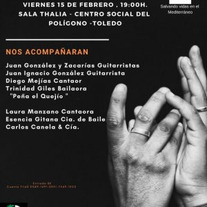 Concierto Solidario de Flamenco a Beneficio de PROEM-AID