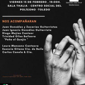 Concierto Solidario de Flamenco a Beneficio de PROEM-AID