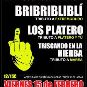 Festival de Tributos.-HAY POCO ROCK AND ROLL