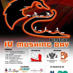 IV Mushing Day Benéfica Ciudad de Toledo