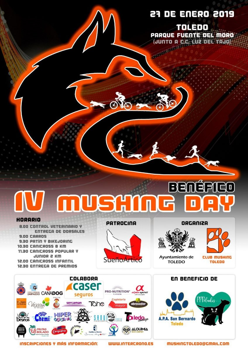 http://www.toledo.es/wp-content/uploads/2019/01/mushing-toledo-2019-848x1200.jpg. IV Mushing Day Benéfica Ciudad de Toledo