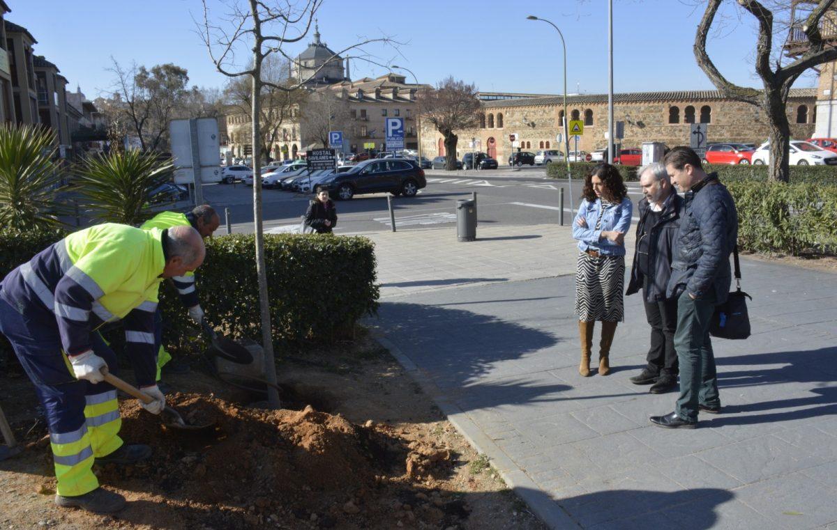 http://www.toledo.es/wp-content/uploads/2019/02/04_plantaciones_crucero-1200x761.jpg. El Gobierno local continúa con la repoblación de árboles en la ciudad con plantaciones en diferentes espacios de Toledo