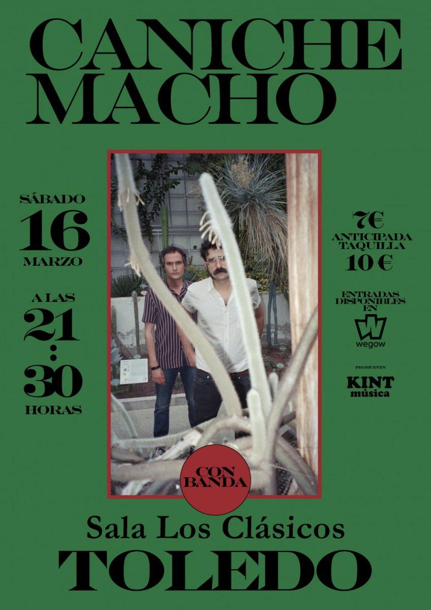 https://www.toledo.es/wp-content/uploads/2019/02/canichemacho-848x1200.jpg. CANICHE MACHO