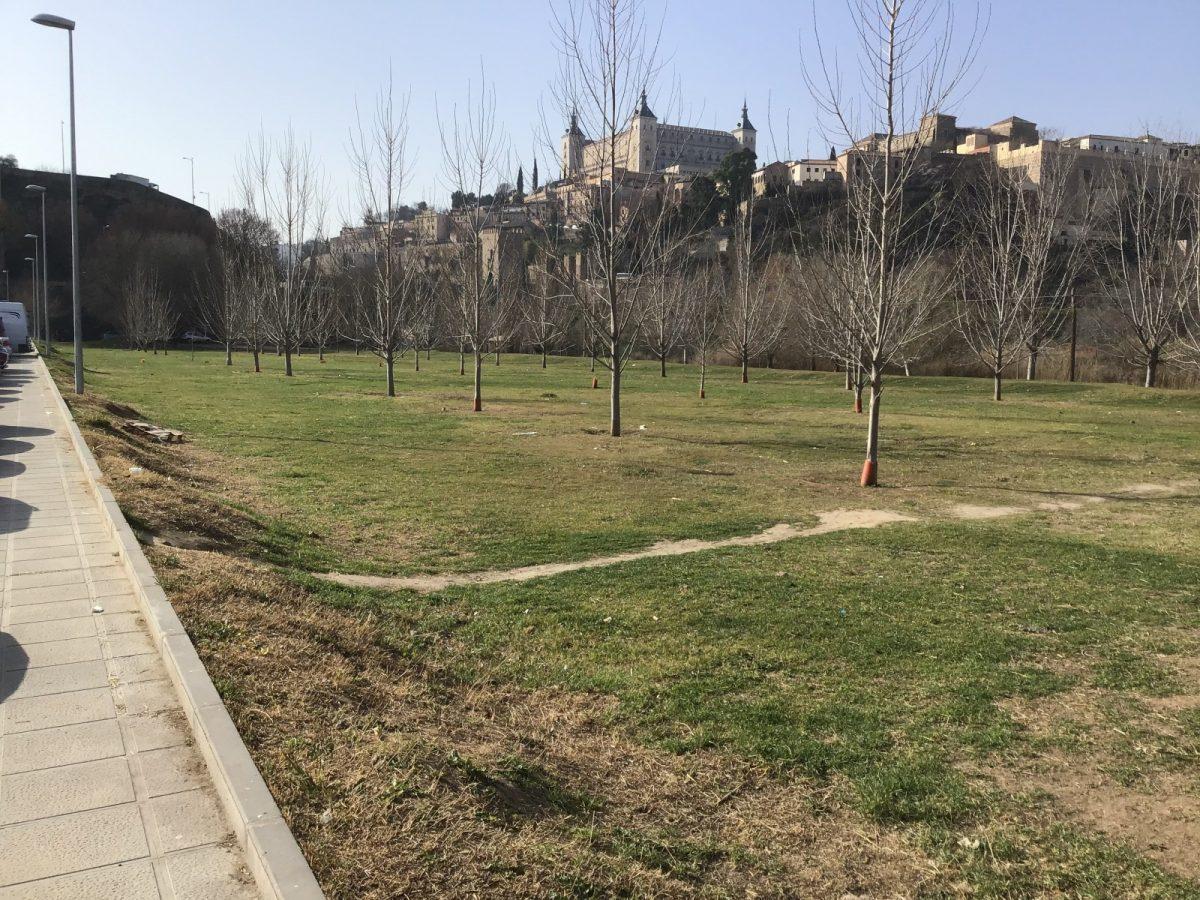 http://www.toledo.es/wp-content/uploads/2019/02/paseo-de-la-rosa-despues-1-1200x900.jpg. El Ayuntamiento lleva a cabo labores de mejora y mantenimiento medioambiental en varios espacios a través del Plan de Empleo