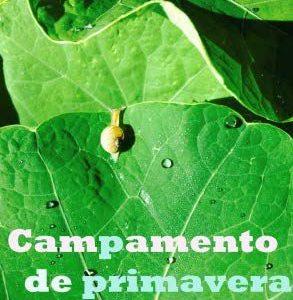 """CAMPAMENTO DE PRIMAVERA: """"MIRADAS"""""""