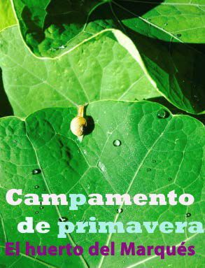 "http://www.toledo.es/wp-content/uploads/2019/03/campamento.jpg. CAMPAMENTO DE PRIMAVERA: ""MIRADAS"""