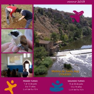 bierto el plazo de inscripciones del campamento urbano 'Mirando al Tajo' para concienciar a los jóvenes sobre el medio natural