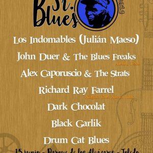 l Sr. Blues Festival regresa este año al Parque de los Alcázares con más bandas y artistas como Richard Ray Farre o Virginia Maestro