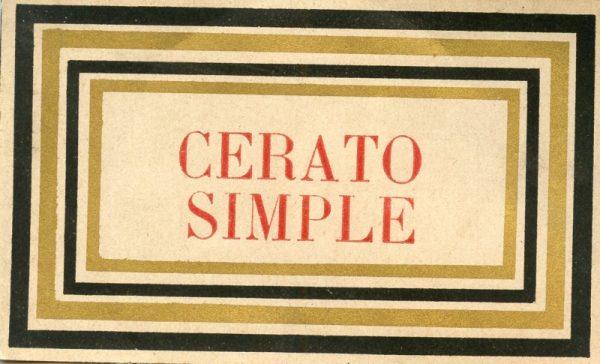 006_Cerato Simple